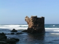 torre-a-porto-paglia