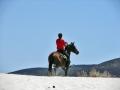 uomo-a-cavallo